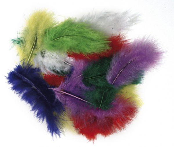 Plumes de décoration - Coloris assortis x 10